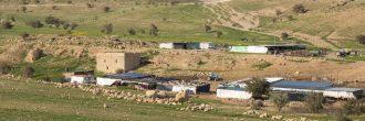 Abraham Path, section Sanur to Sebastia