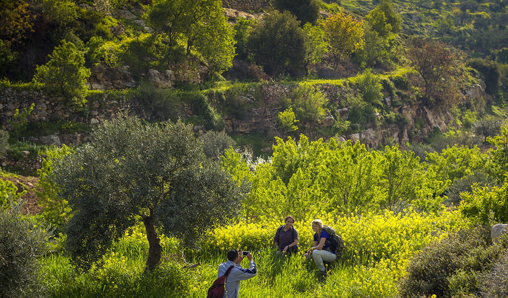 Hebron, Palestine, March 2015. Hikers on the trail between Dura and Surra. The Abraham Path is a long-distance walking trail across the Middle East which connects the sites visited by the patriarch Abraham. The trail passes through sites of Abrahamic history, varied landscapes, and a myriad of communities of different faiths and cultures, which reflect the rich diversity of the Middle East. Photo by Frits Meyst / MeystPhoto.com for AbrahamPath.org